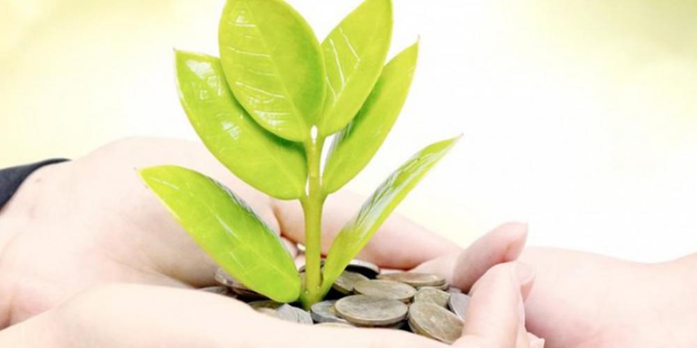 A quoi sert un Directeur Développement Durable ?