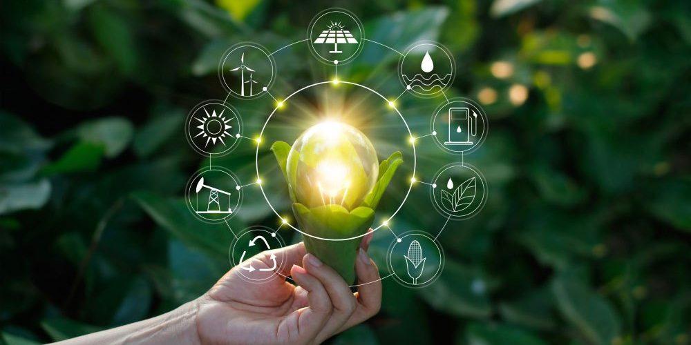L'innovation durable, ou le défi de créer dans la limite imposée par notre écosystème