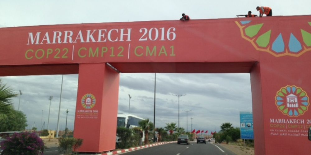 COP22 : Retour sur les prises de parole et actions du C3D