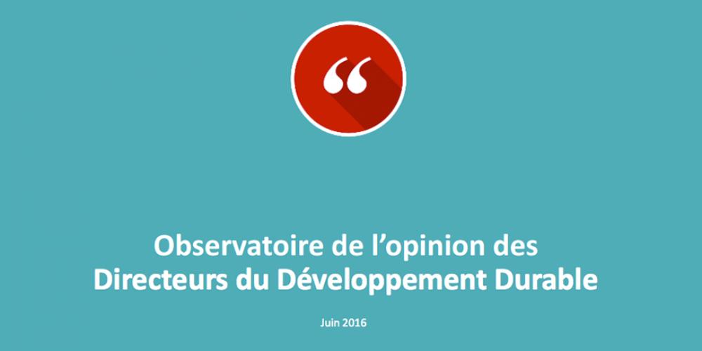Responsabilité sociale, transformation numérique, innovations : les Directeurs DD en action face aux transitions