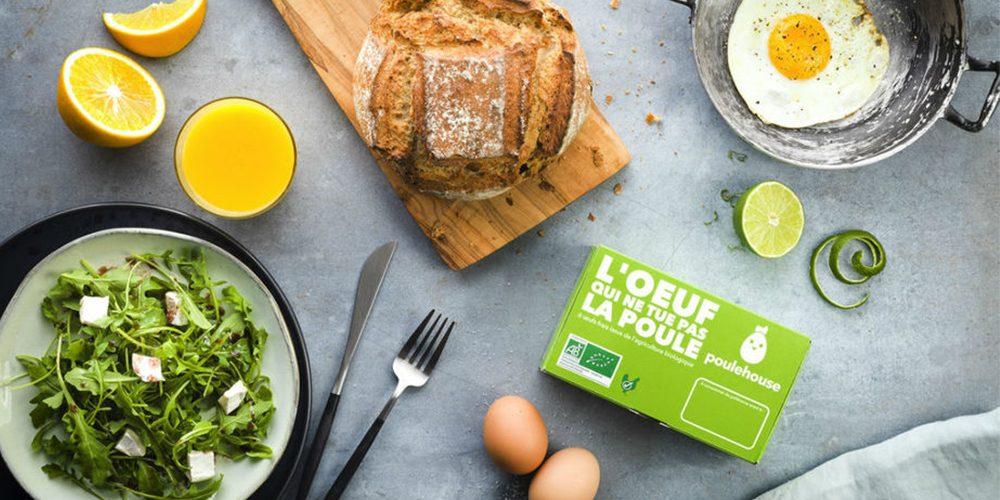 Pour que l'œuf ne tue pas la poule : Carrefour s'engage pour le bien-être des poules pondeuses