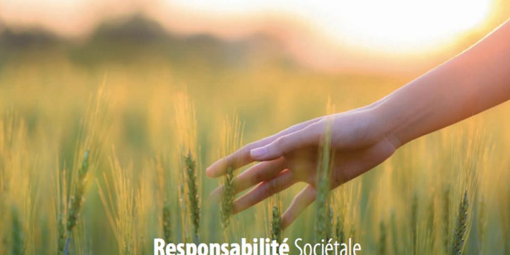 Rapports RSE 2015 des membres du C3D : entre renouvellement des engagements et innovations